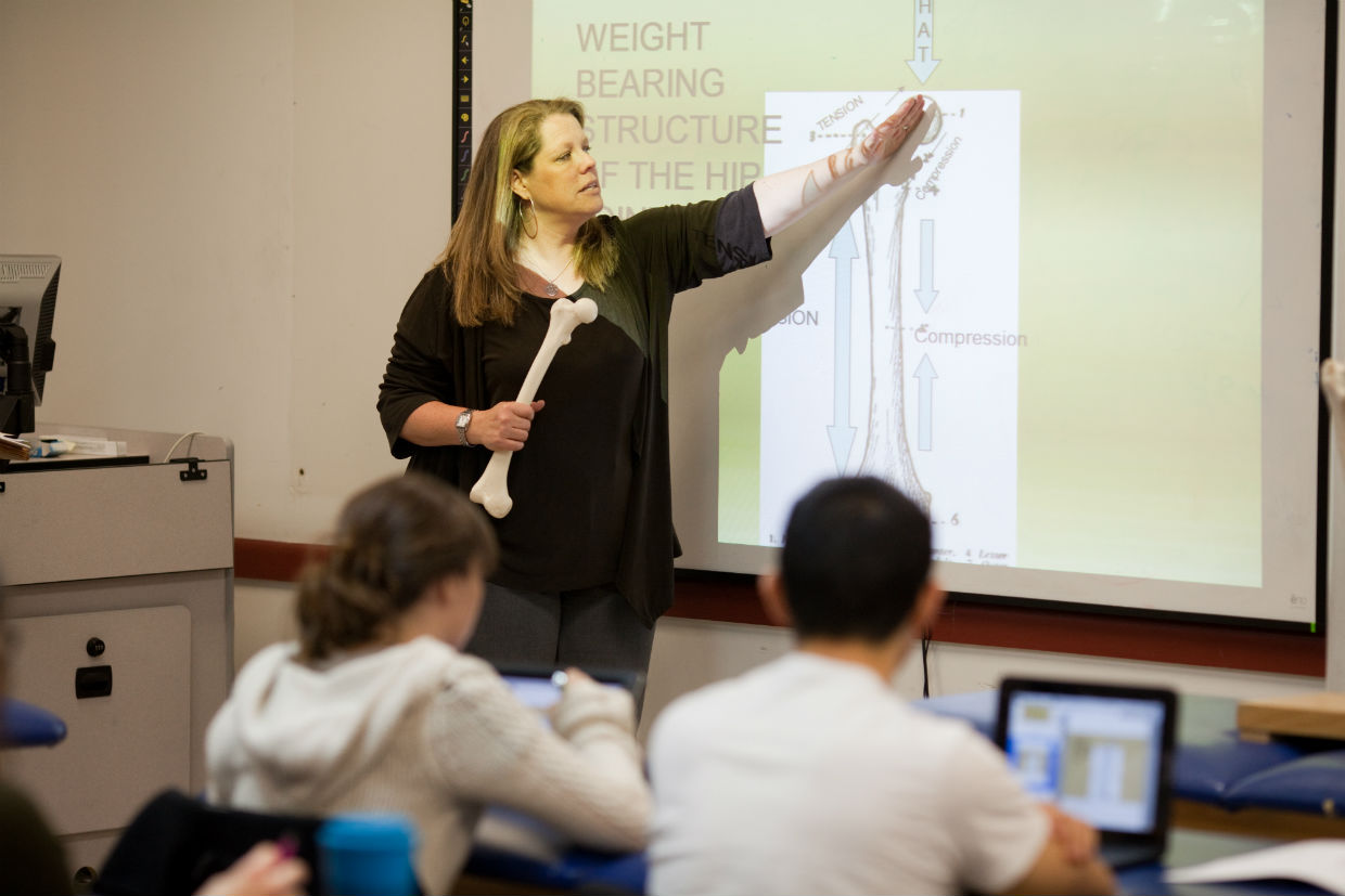 Touro College Prof. Jill Horbacewicz, Chair/Director of the Physical Therapy department, teaching a class.